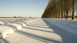 img_5092-warmer